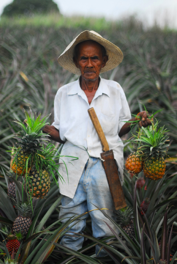 03_i-mag photography magazine_Haneval Ramos_pineapple farmer